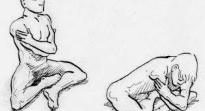 Makko-Ho Herz-Kreislauf Dreifachwärmer